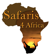 Safaris 4 Africa