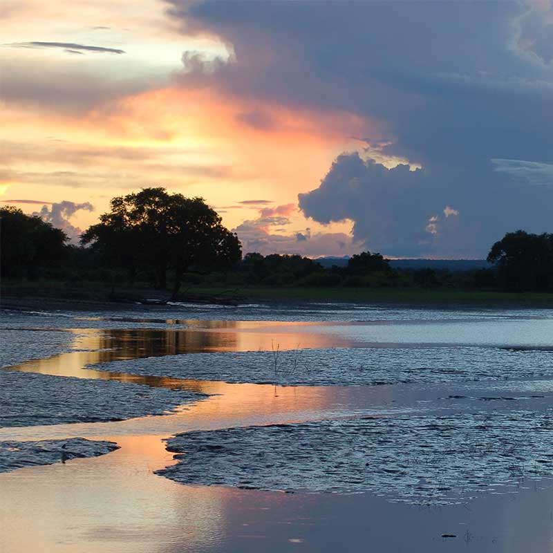 South-Luangwa-zambia-saf4africa