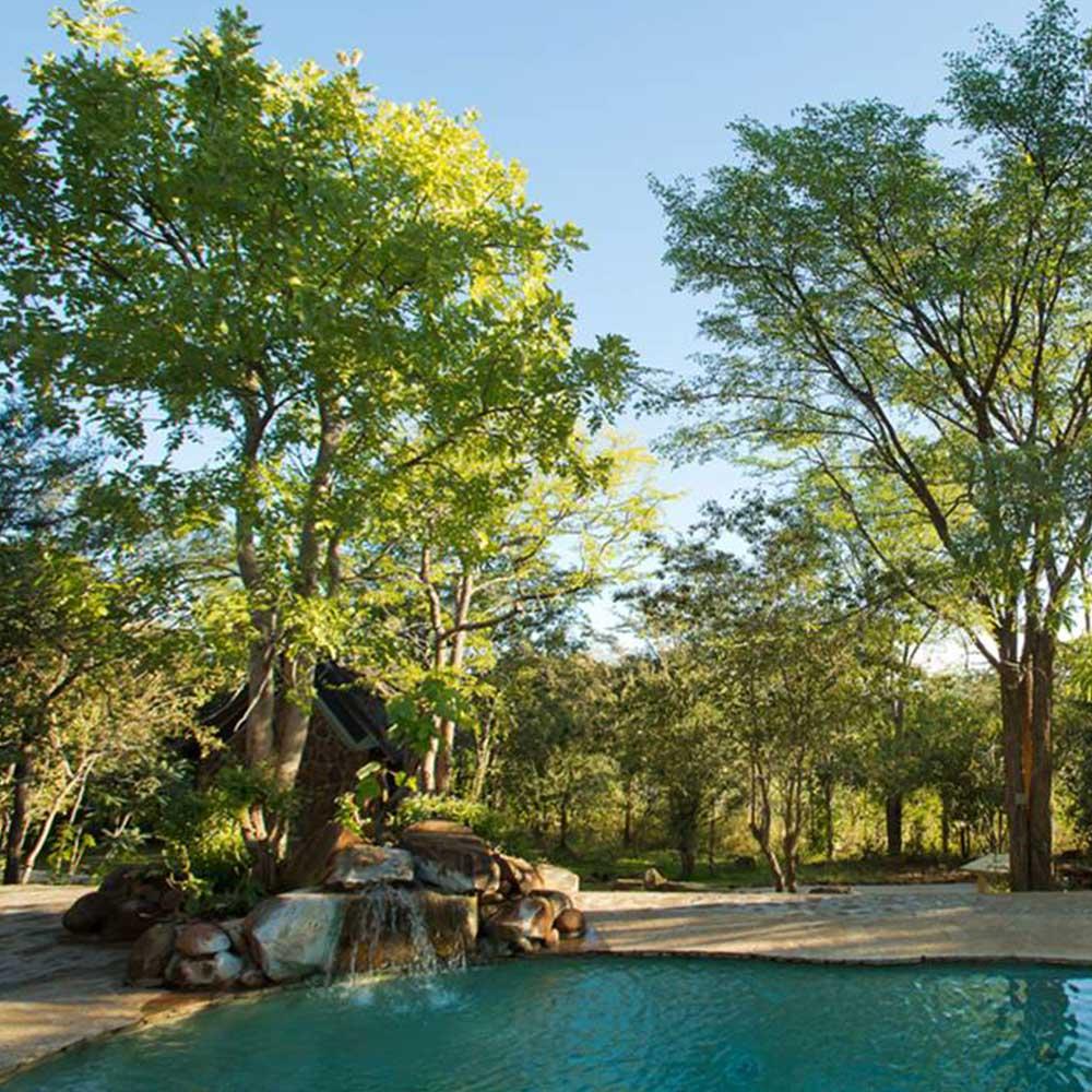 Masuwe Lodge Pool Safaris 4 Africa