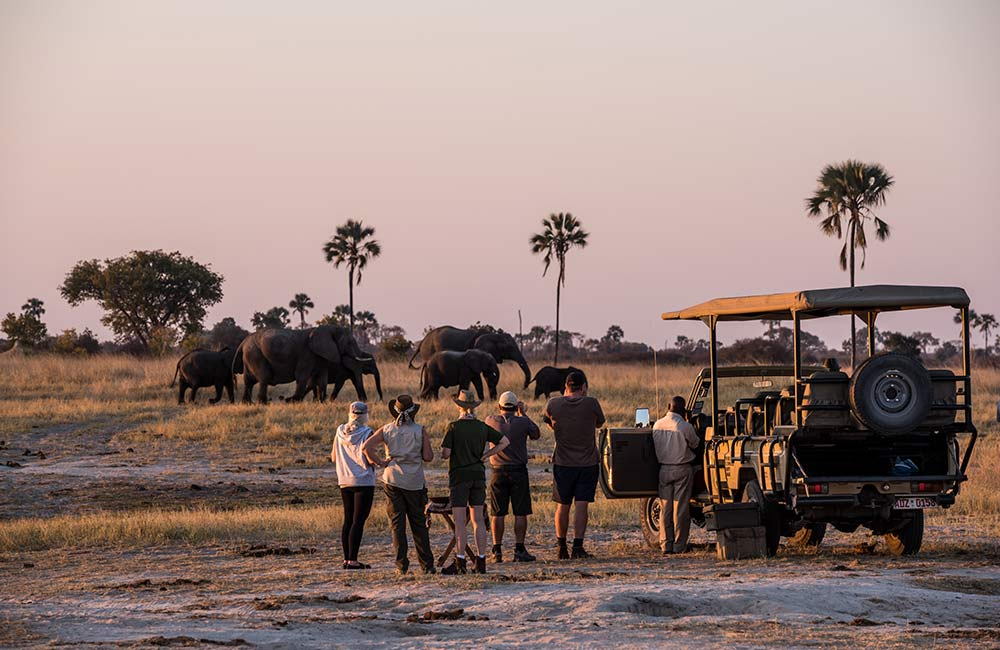 Game Drive The Hide Hwange National Park